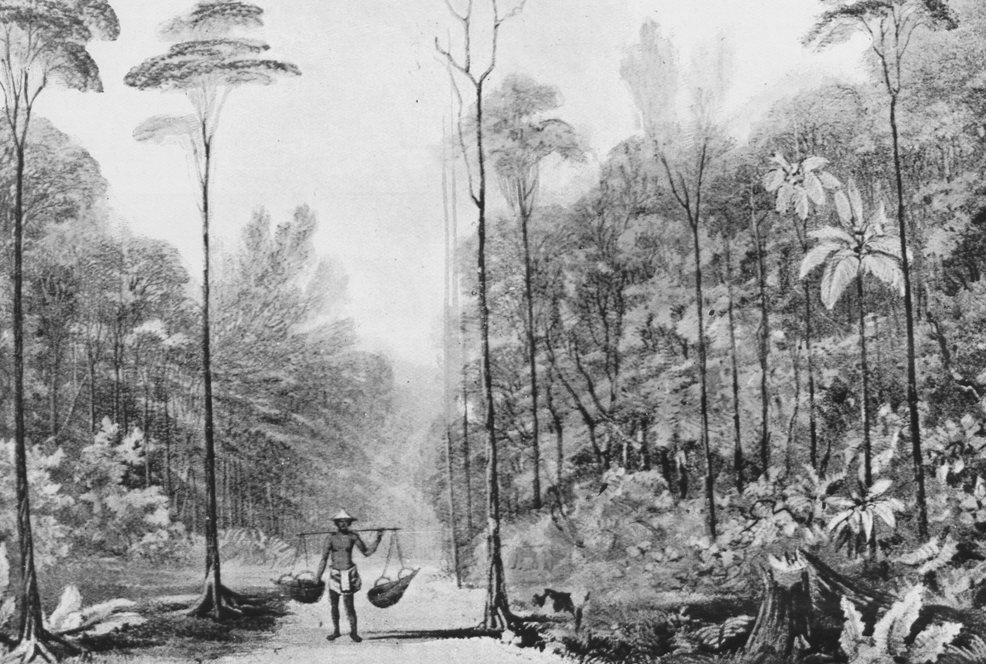 Singapore in the early nineteenth century