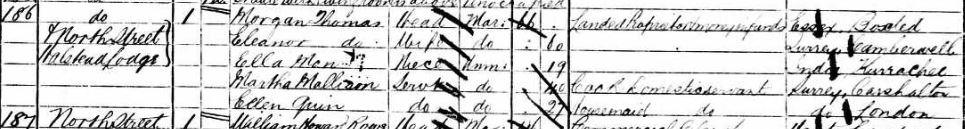1881 Census: Morgan Thomas, his wife Eleanor and their niece Ella Man