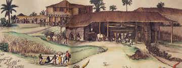 Sugar Refinery